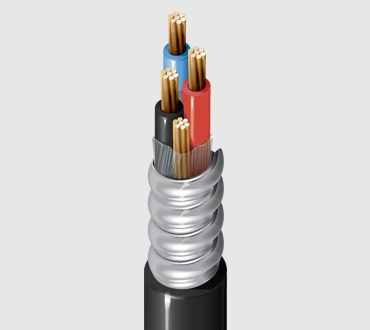 Metal Clad Cable (600 V Multi-Conductor)
