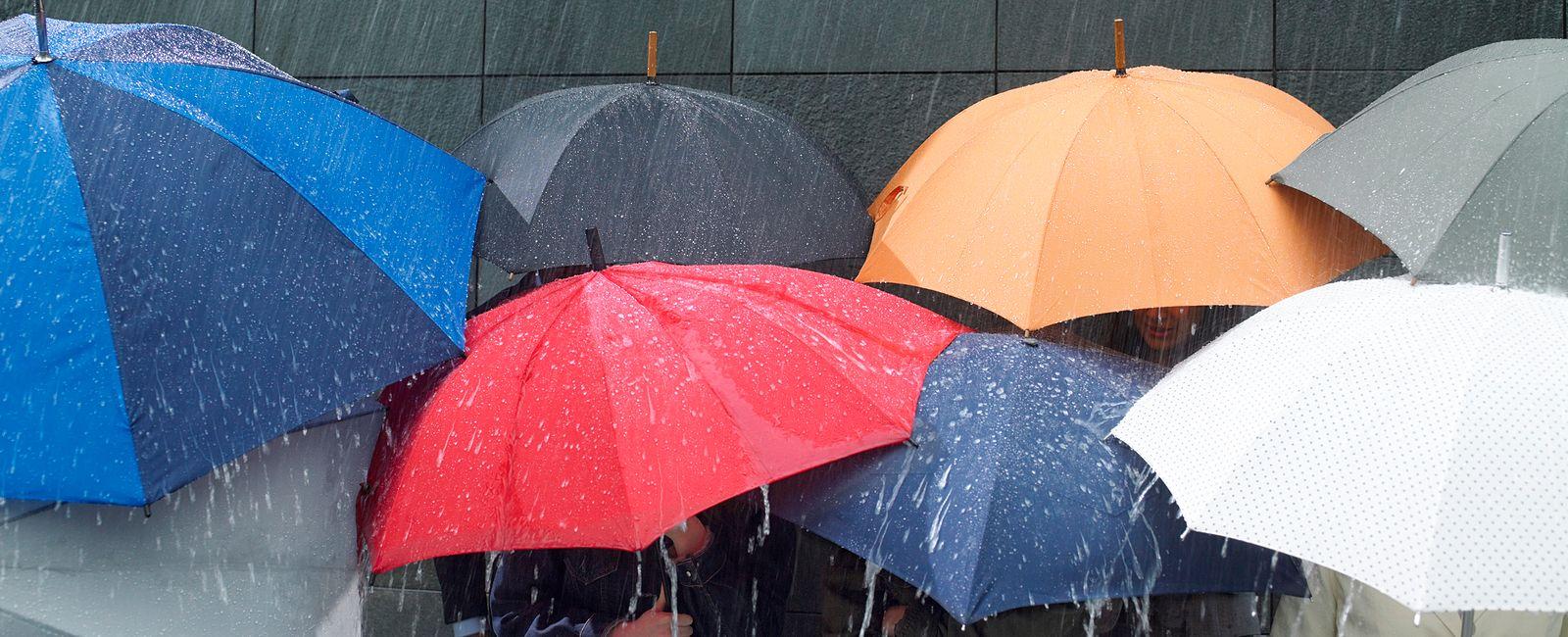 umbrella-header-1600x650