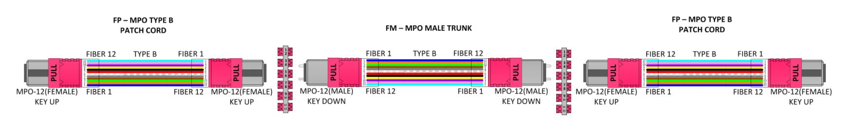 How-To Rules of Fiber Polarity Example 4