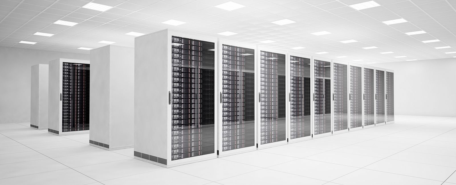 Network racks in a whitespace
